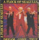 Dream Come True - A Flock Of Seagulls