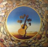 Kieselsteine - Adamo