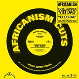 Viet Dao - Africanism All Stars