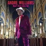 Don't Ever Give Up - Andre Williams