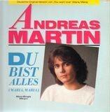 Du Bist Alles (Maria, Maria) - Andreas Martin