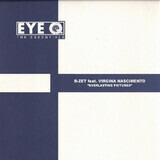 Everlasting Pictures - B-Zet Feat. Virginia Nascimento