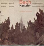 Zwei Kirchenkantaten (Andre Vandernoot) - Bach