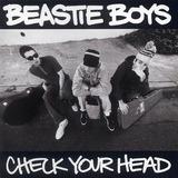 Check Your Head - The Beastie Boys