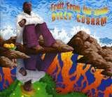 Fruit from the Loom - Billy Cobham