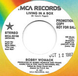 Living In A Box - Bobby Womack