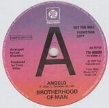 Angelo - Brotherhood Of Man