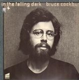 In the Falling Dark - Bruce Cockburn