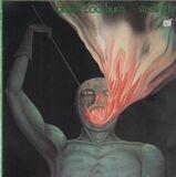 Stealing Fire - Bruce Cockburn