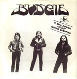If Swallowed, Do Not Induce Vomiting - Budgie