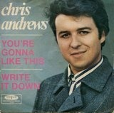 You're Gonna Like This - Chris Andrews