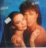 What If We Fall in Love - Crystal Gayle & Gary Morris