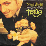 If Everything You Said Was True - Danny Wilson