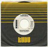 Shoogie Wanna Boogie / Gotta Be Where You Are - Dave Matthews