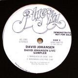 David Johansen Live / Sampler - David Johansen