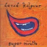 David Kilgour
