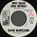 Who Killed Ezra Brymay - David McWilliams