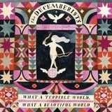 What a Terrible World, What a Beautiful World - The Decemberists
