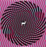 Cryptograms/Flourescent - Deerhunter