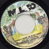 What's Going On In My House - Denise LaSalle