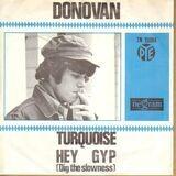 Turquoise - Donovan