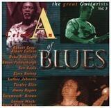 A Celebration Of Blues - Duke Robillard / Luther Johnson / Son Seals a.o.