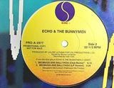 Bedbugs And Ballyhoo - Echo & The Bunnymen