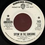 Sittin' In The Sunshine / Sunshine And Flowers - Eric Andersen