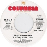 A Fool Like You - Eric Andersen