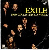 how could this go wrong - Exile