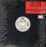 What's Luv / Definition Of A Don - Fat Joe