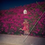 Pleasure (2lp) - Feist
