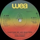 Together We Are Beautiful - Fern Kinney