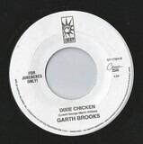 That Summer / Dixie Chicken - Garth Brooks