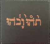 Slow Riot For New Zerø Kanada E.P. - Godspeed You Black Emperor!