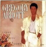 Shake You Down - Gregory Abbott
