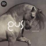 Arabian Horse - Gus Gus