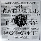 A Bath Full Of.. - Hot Chip