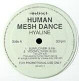 Human Mesh Dance