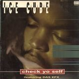 Check Yo Self - Ice Cube