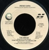 The Dream (Hold On To Your Dream) - Irene Cara