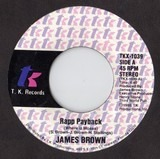 Rapp Payback (Where Iz Moses) - James Brown