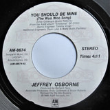 You Should Be Mine (The Woo Woo Song) - Jeffrey Osborne
