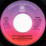 Do It In Slow Motion - Jim Haven And Friend