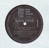 Big Timer - KRS-One