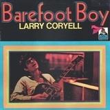 Barefoot Boy - Larry Coryell