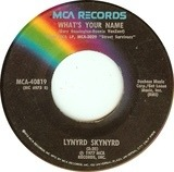 What's Your Name / I Know A Little - Lynyrd Skynyrd