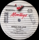 Wired For Love - Mandrill