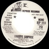 Goodbye Surprise - Mark Volman And Howard Kaylan