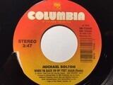 When I'm Back On My Feet Again - Michael Bolton